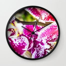 Lilac orchid light Wall Clock