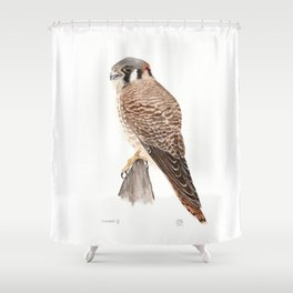 Falcon Watercolor Painting  Shower Curtain