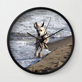 Flying Dog - Catania Beach - Sicily Wall Clock
