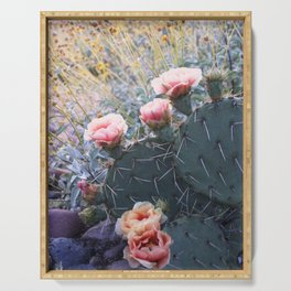 Cactus Flower Series: Pink Blossoms in Field of Gold Serving Tray