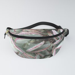 Green and Pink Succulents Fanny Pack