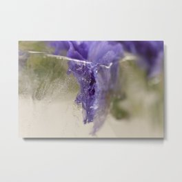 Transience Metal Print
