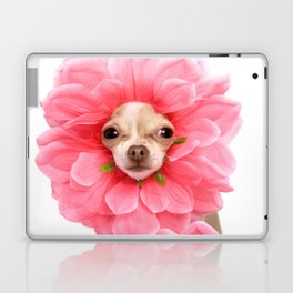 Chihuahua Flower Laptop & iPad Skin