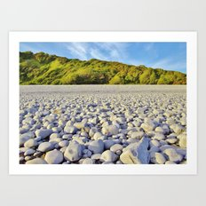 Pebbles, Trees & Sky Art Print