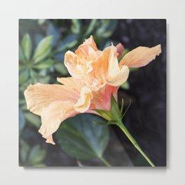 Jane Cowl Tropical Hibiscus Side Profile Metal Print