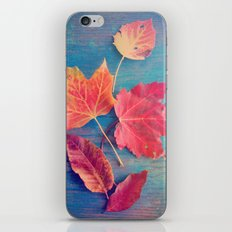 The Colors of Autumn iPhone Skin