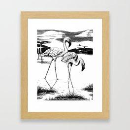 Flamingos Framed Art Print