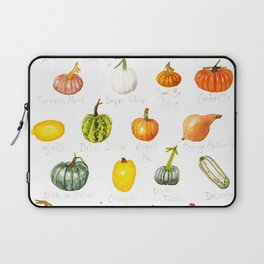 Pumpkins and Squashes Laptop Sleeve