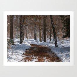 Melting Path #1 Art Print