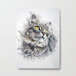 Cat Cute Animal Metal Print