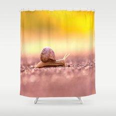 Snail shell Design Shower Curtain