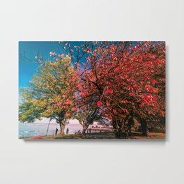 Beautiful Autumn Trees in Evian - France Metal Print