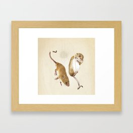 Harvest mice Framed Art Print
