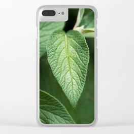 Textured Sage Leaf Clear iPhone Case