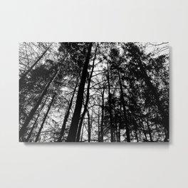 B/W Forest Metal Print
