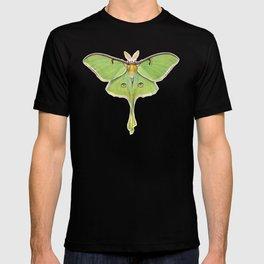 Luna Moth (Actias luna) II T-shirt