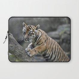 Curious Sumatran Tiger Cub Laptop Sleeve