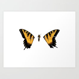 Brand New Eyes Butterfly Art Print