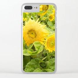 Teddy Bear Sunflowers Clear iPhone Case