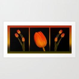 Orange tulips  Art Print