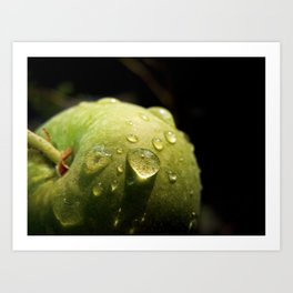 Morning Apple Dew Art Print
