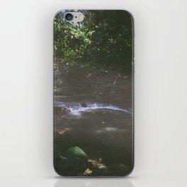 Hidden jungle waterfalls iPhone Skin