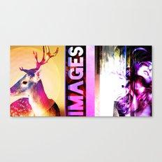 IMAGES A Random Crazy Poster Canvas Print