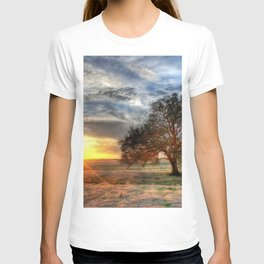 Lonely tree in a field T-shirt
