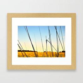 Prairie I Framed Art Print