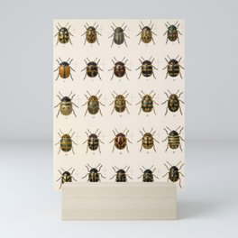 Naturalist Beetles Mini Art Print