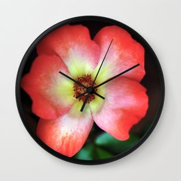 Poppin' Play-boy Rose Wall Clock