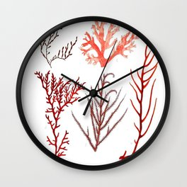 Algae Study I Wall Clock