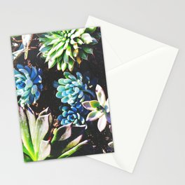 So many succulents, so little time. Stationery Cards