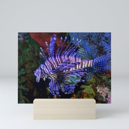 Pterois Mini Art Print