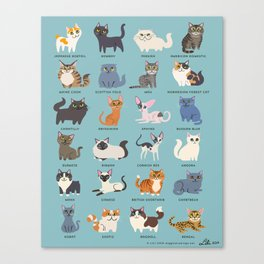 Cats! Canvas Print