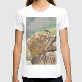 Cape Wagtail T-shirt