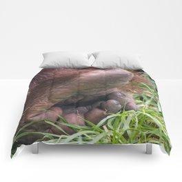 Tread Lightly Comforters