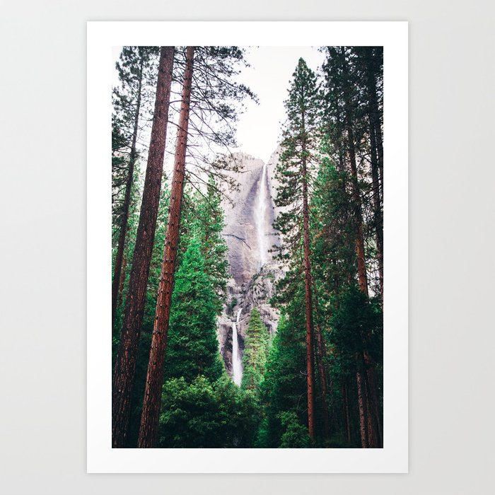 Waterfall amongst trees Art Print