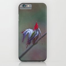 Ready for take off iPhone 6s Slim Case