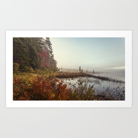 morning by the pond Art Print