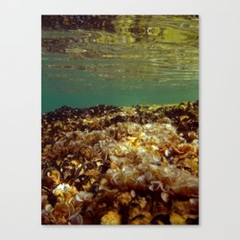 UNDERWATER IV. Canvas Print