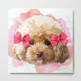 Baby Poodle Metal Print