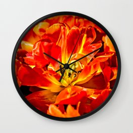 Macro view of red tulips Wall Clock