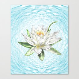 Waterlily Colored pencil Canvas Print