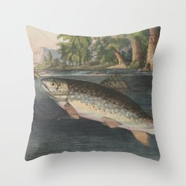 Vintage River Fishing Illustration (1874) Throw Pillow