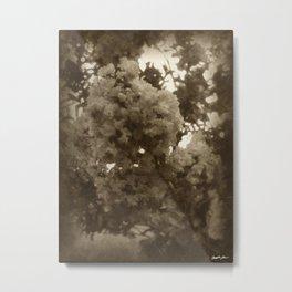 Crape Myrtle Antiqued Metal Print