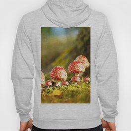Beautiful but toxic - Fly agaric - Amanita - Autumn illustration - #society6 #buyart Hoody