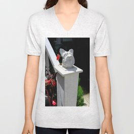 RIP Toto...An Ancient Traveler Unisex V-Neck