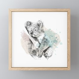 Koala Framed Mini Art Print