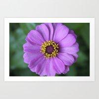 rileigh smirl Art Prints featuring Purple Flower by Rileigh Smirl